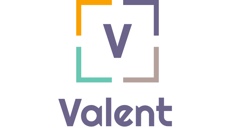 Valent Marketing Consultancy